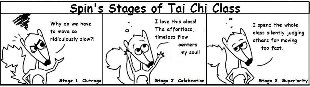 10.TaiChi Tai Chi