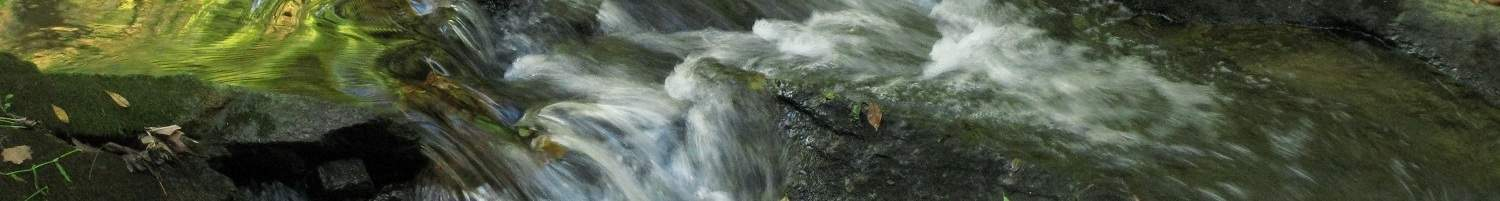 Header14 The Power of the Water Element