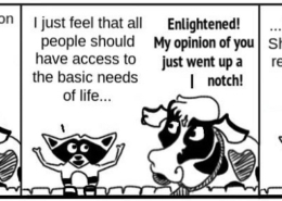 BasicRights-260x185 Personal Growth Comic - Ratchet & Spin