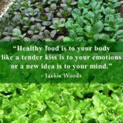 Healthy Food by Jackie Woods