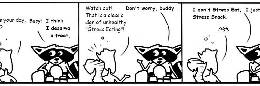 Ratchet & Spin: Stress Eating