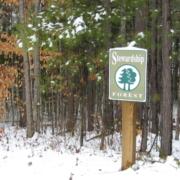 Stewardship Forest at Adawehi