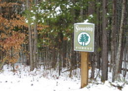 Stewardship-Forest-2-260x185 Personal Growth