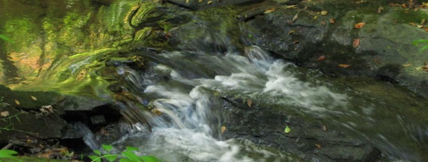 Trail-White-Oak-Creek-3-1-845x321 Home